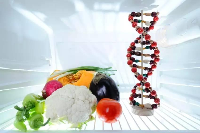 Dieta wedługów genów DNA Warszawa Ostrołęka