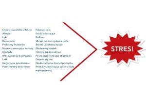 stres, hormony, kortyzol, serotonina, dopamina